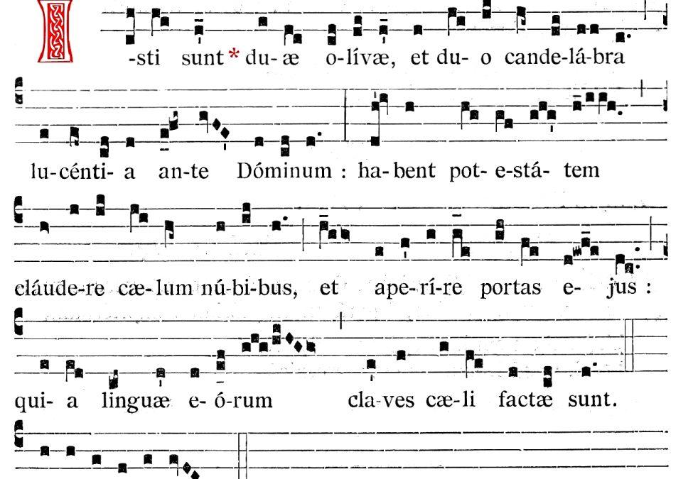 Mardi 10 novembre (ReConfinement J12) : Saint Vanne et Saint Hydulphe